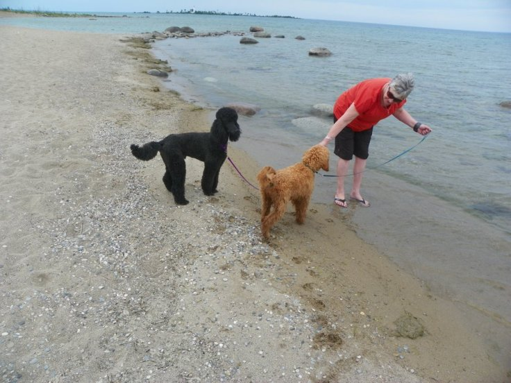 quincy_TryingtogetQuincyandJourneytoenterLakeHuron